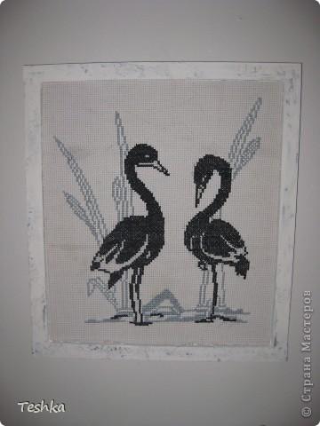 Черно-белое фото 2