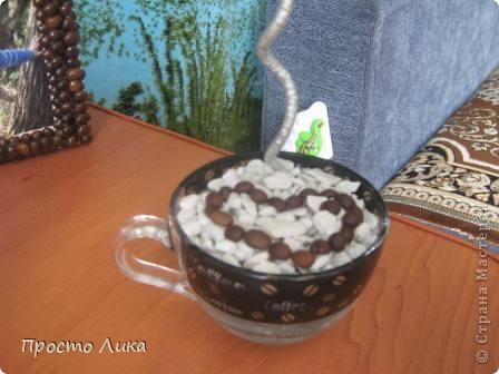 Кофейный топиарчик и рамочка  фото 3