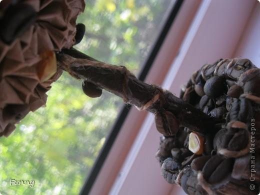 Здравствуйте все заглянувшие в гости!)) Мой сегодняшний блог посвящен не лепке из холодного фарфора, как вы могли подумать, а топиариям разных форм и размеров, а фото кофейных зерен и цветка просто как бы обобщает тему этих топиариев, но обо всем по порядку.... фото 20