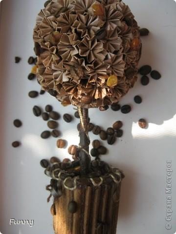 Здравствуйте все заглянувшие в гости!)) Мой сегодняшний блог посвящен не лепке из холодного фарфора, как вы могли подумать, а топиариям разных форм и размеров, а фото кофейных зерен и цветка просто как бы обобщает тему этих топиариев, но обо всем по порядку.... фото 16