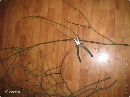 Бонсай топиарий Мастер-класс МК по стволам для топиариев  красоту деревца делает не только его крона  Дерево Материал природный фото 3