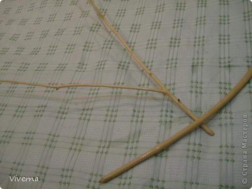 Бонсай топиарий Мастер-класс МК по стволам для топиариев  красоту деревца делает не только его крона  Дерево Материал природный фото 12