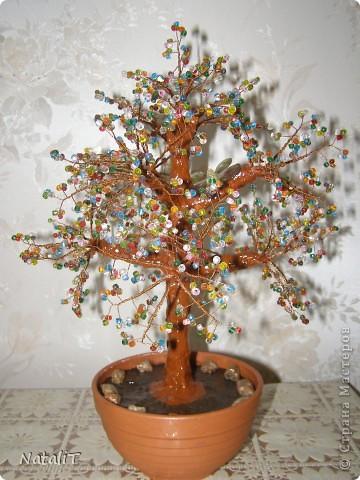 Радужное деревце фото 4