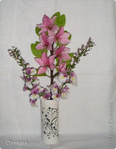 Композиция Орхидейное дерево (веточка) и Глициния (кисти) фото 1