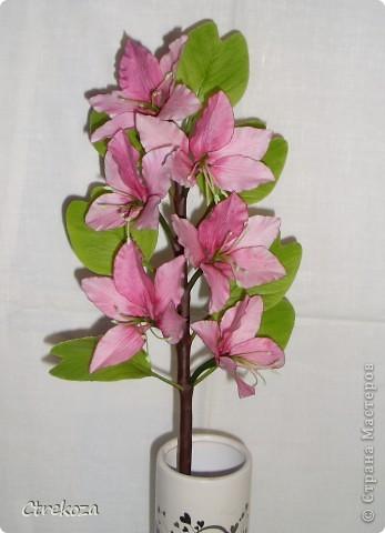 Композиция Орхидейное дерево (веточка) и Глициния (кисти) фото 3