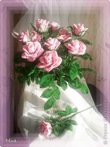 В розовом цвете фото 3