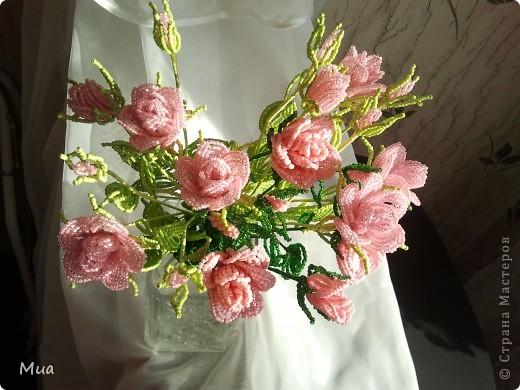 В розовом цвете фото 4