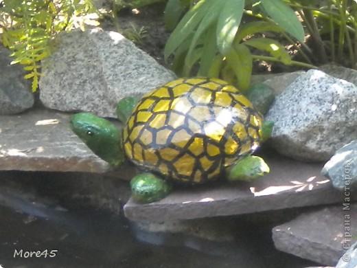 Вот такой пучеглазик получился, теперь живет в саду. фото 4