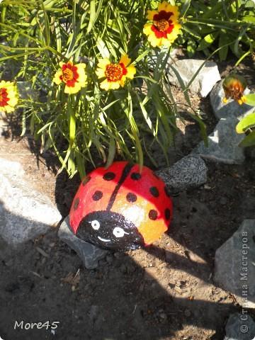 Вот такой пучеглазик получился, теперь живет в саду. фото 9