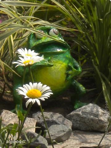 Вот такой пучеглазик получился, теперь живет в саду. фото 2
