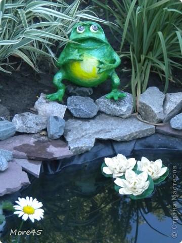Вот такой пучеглазик получился, теперь живет в саду. фото 1