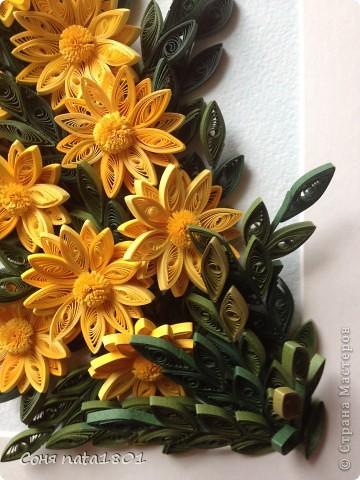 Желтые цветы!!! фото 2