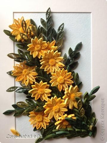 Желтые цветы!!! фото 1