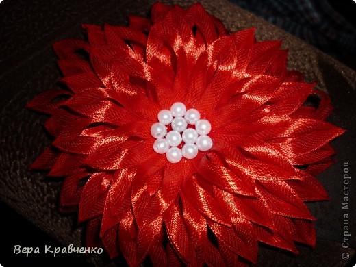 Доброго времени суток!!!!!!! Примите еще один цветочек на обозрение, критику и советы!!!! фото 2