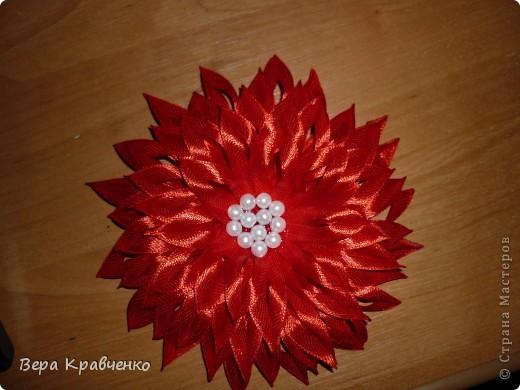 Доброго времени суток!!!!!!! Примите еще один цветочек на обозрение, критику и советы!!!! фото 1