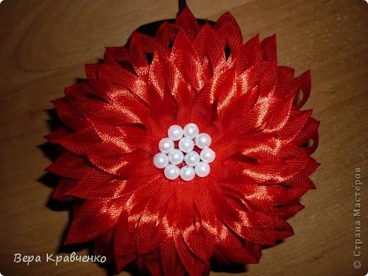Доброго времени суток!!!!!!! Примите еще один цветочек на обозрение, критику и советы!!!! фото 3