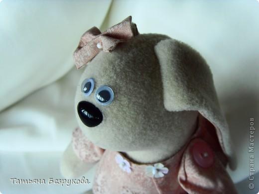 Сонный зайка. фото 1