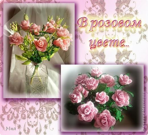 В розовом цвете фото 1