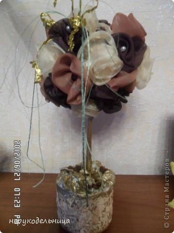 Топиарий, который я делала на заказ. Одна знакомая увидев у моей сестры деревце, которое я делала ей на 8 марта, захотела себе такое же. Вот я его слепила из того, что было. фото 1