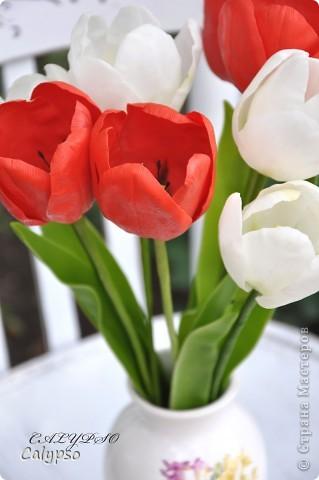 Люблю лепить цветы, которые так недолговечны - особенно тюльпаны. Они ,кстати, обладают одним замечательным свойством - благодаря контрасту белого и красного они снимают усталость))))))))))))))))) вот, получились волшебные тюльпашки))))))))))) фото 2