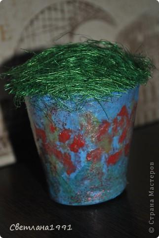 Дерево с конфетами. фото 3