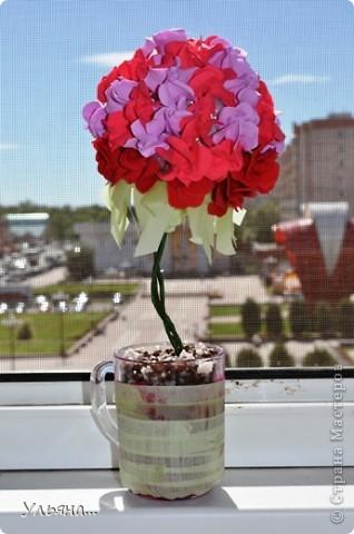 Розовый топиарий. фото 2