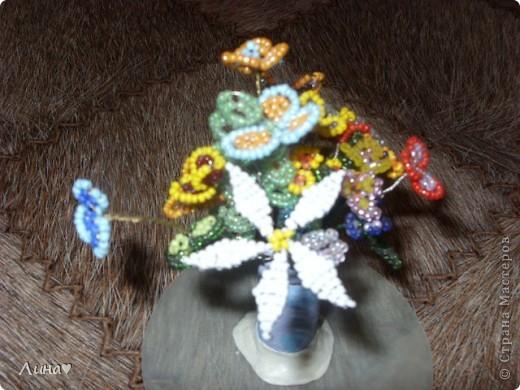 весенние цветы фото 2