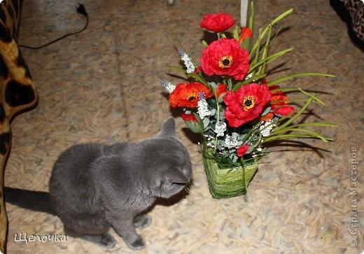 Вот такой подарок получился на день рождения моей свекрови. фото 3