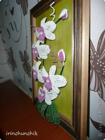 Хотелось сделать сестре к дню рождению орхидею - опыт уже имеется, но встал вопрос, как уберечь подарок от нашего маленького племянника-сорванца))) Решение пришло мужу - сделать цветы на картине, чтобы мальчишка не смог их достать. Воплощено... К сожалению сделать достойное фото мне так и не удалось, но все же делюсь тем что есть. фото 2