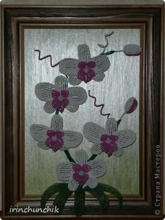 Хотелось сделать сестре к дню рождению орхидею - опыт уже имеется, но встал вопрос, как уберечь подарок от нашего маленького племянника-сорванца))) Решение пришло мужу - сделать цветы на картине, чтобы мальчишка не смог их достать. Воплощено... К сожалению сделать достойное фото мне так и не удалось, но все же делюсь тем что есть. фото 3