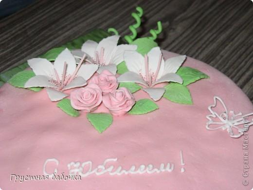 Здравствуйте, дорогие мои! Огромное спасибо Танюше http://stranamasterov.ru/user/97658   за помощь в создании этого тортика! Много недочетов, которые учту в следующий раз.  фото 3