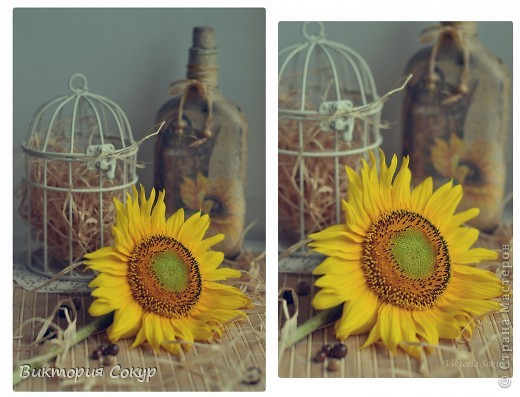 Летний состаренный набор кантри  с изображением цветов солнца!!! фото 7