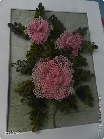 Розы или пионы? фото 1