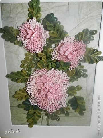 Розы или пионы? фото 2