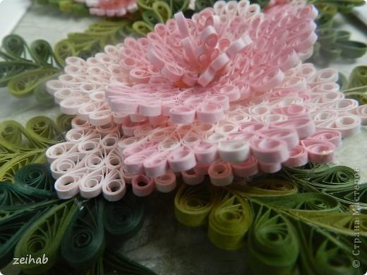 Розы или пионы? фото 5