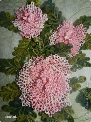 Розы или пионы? фото 8