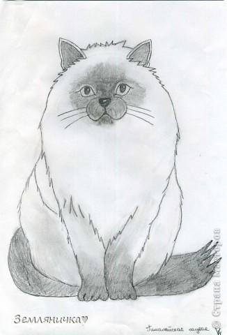 Очень люблю рисовать.Что-то выдумывать я не умею,умею только срисовывать. Рисунки далеко не идеальны,зато их рисование приносит колоссальное удовольствие :)  Просто ужасно получалась рука мальчика.Руки пока не получается рисовать. фото 5
