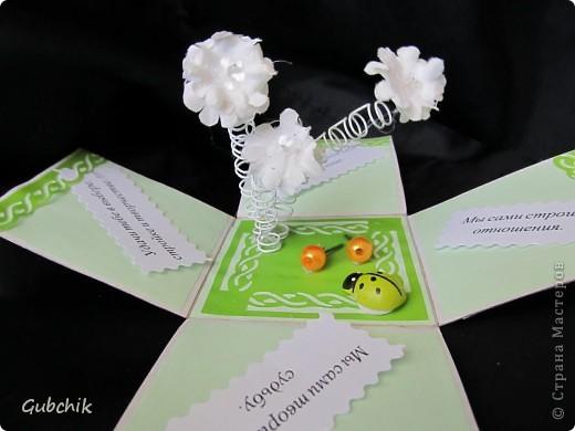 Коробочки с сюрпризом от новичка. фото 6