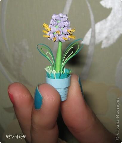 Моя первая миниатюра фото 2