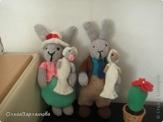 Семья зайцев фото 1