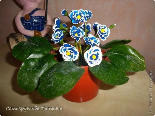 Здравствуйте,жители страны!Давно ничего не лепила,лето...вот добралась,воспользовалась МК Татьяны Родченко(цветы) и Ланы 58(листья)Большое им спасибо! фото 1