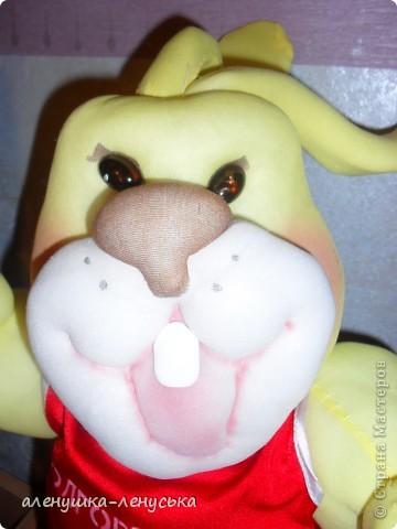 солнечный заяц-символ областной спартакиады фото 2