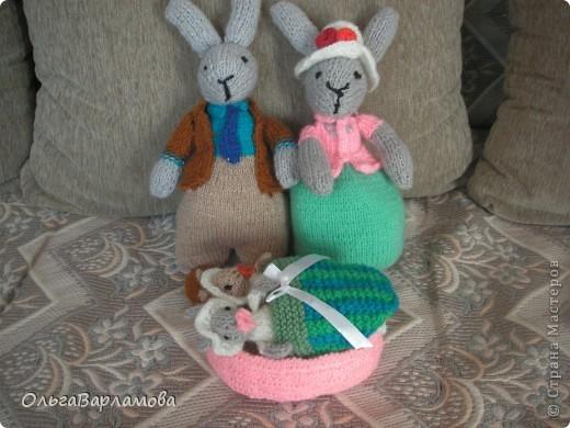 Семья зайцев фото 3