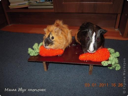 Вязание овощи фото 7