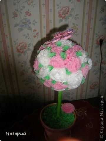 Дерево счастья фото 3