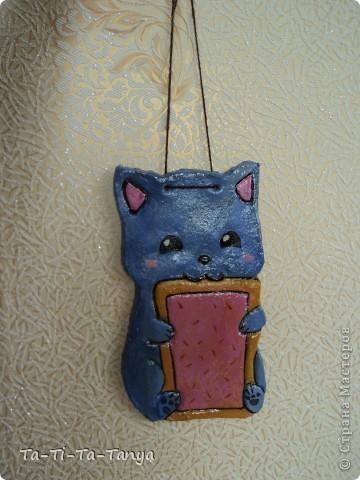 Такой Nyan Cat  получился из соленого теста) Нян Кэт - это сушество, с головой кошки (очень милой кошки) и телом печеньки. фото 3