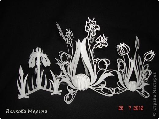 Вот такие цветочки у меня выросли из бумаги. фото 1