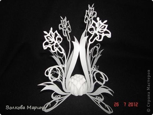 Вот такие цветочки у меня выросли из бумаги. фото 5