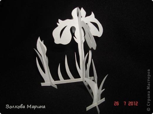 Вот такие цветочки у меня выросли из бумаги. фото 18