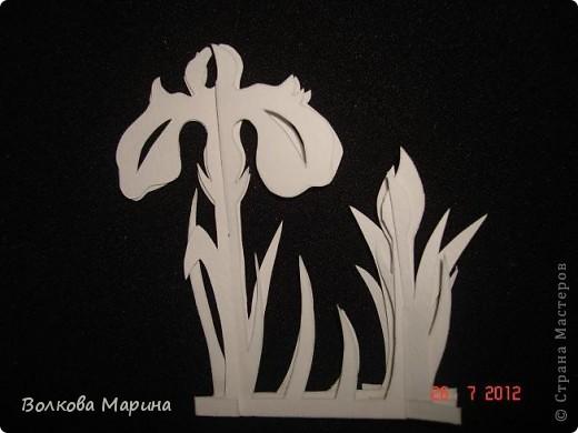 Вот такие цветочки у меня выросли из бумаги. фото 19